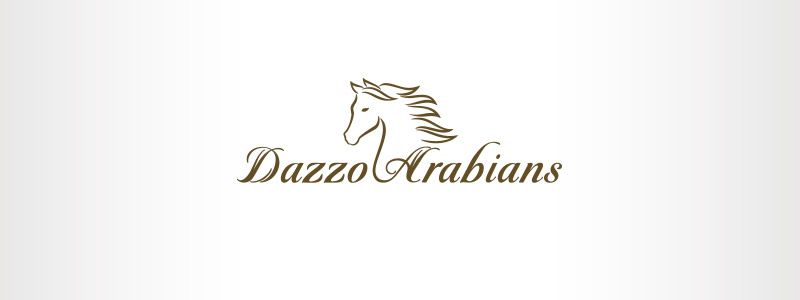 Arabian steed logo design produced for a steed ranch that concentrates on breeding Arabian program horses.