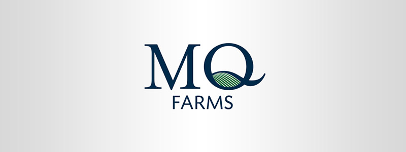 Logo style MQ farms, this Urbandale company logo layout has actually a field included into the letter Q.